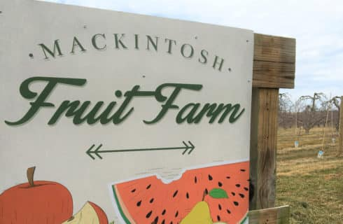 Big white sign that says Mackintosh Fruit Farm with apples and watermelon painted on s