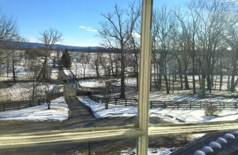 View from window of snow-covered walking paths and blue skies